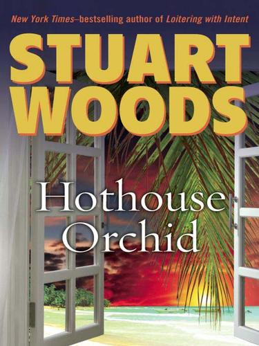 Download Hothouse Orchid