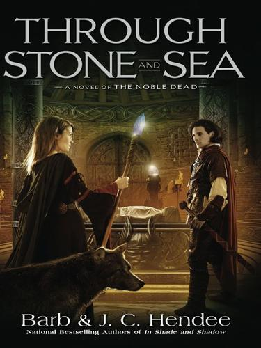 Download Through Stone and Sea