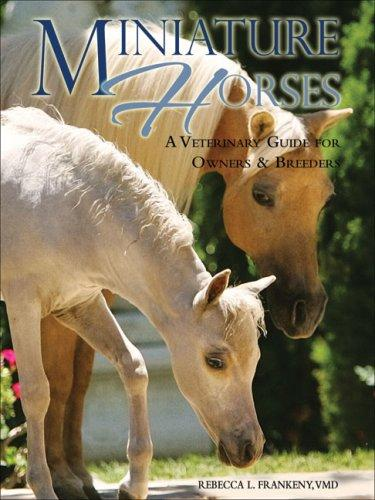 Download Miniature Horses