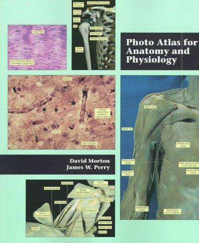 Photo atlas for anatomy and physiology by David Morton