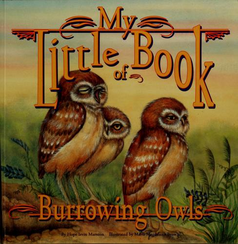 My little book of burrowing owls by Hope Irvin Marston